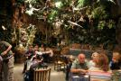 gal/Disneyland_Resort_Paris/Disney_Village/Rainforest_Cafe/_thb_IMG_6778.JPG