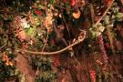 gal/Londres/Piccadilly_Circus/Rainforest_Cafe/_thb_IMG_2099.jpg