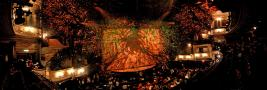 gal/Musical_Theatres/The_Lord_of_the_Rings_-_Drury_Lane_Theatre_Royal/_thb_Drury1.jpg