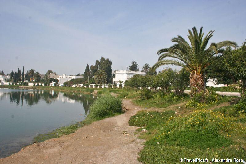 gal/Voyages/Tunisia/Carthage/Carthage_ruines_Tunis016.jpg